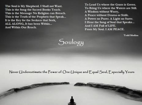 Soulogy - Never underestimate the power of One Unique Soul