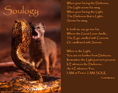 Soulogy - Light and Darkness