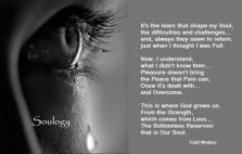 Soulogy - It's the tears that shape my Soul