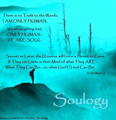 Soulogy - I AM not only Human