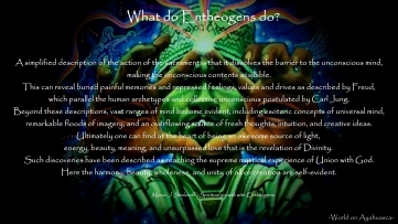 -World on Ayahuasca- What do entheogens do